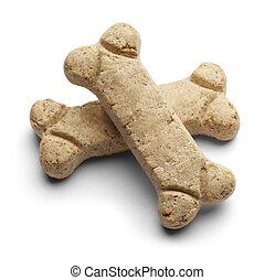 biscuit, dog
