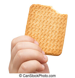 biscuit in his hand on a white background