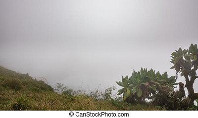 Bisoke volcano time lapse in Rwanda