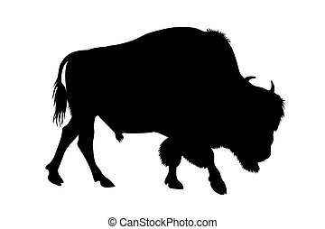 Bison - Abstract illustration of buffalo