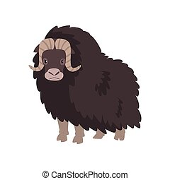 Bison, arctic polar animal vector Illustration on a white background