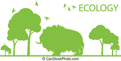 Bison ecology vector background concept landscape