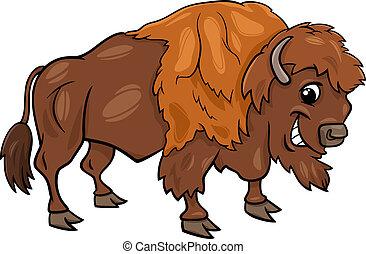 bisonte, norteamericano, búfalo, caricatura, ilustración