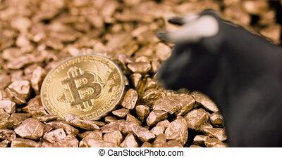 Bullish bitcoin price rise concept. Bull market and rising value on digital gold. 4k resolution focus shift