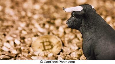 Bullish bitcoin price rise concept. Bull market and rising value on digital gold. 4k resolution pan movement