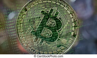 Bitcoin gold coin. Cryptocurrency concept in rotate zoom