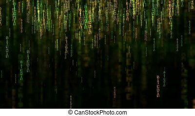 Bitcoin data code matrix style concept