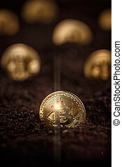bitcoin, exploitation minière, et, cryptocurrency, concept