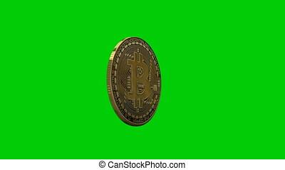 Bitcoin rotating loop, Green Screen