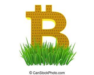 Bitcoin symbol on grass