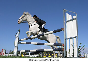 A horse in a bitless bridle clearing a jump. Taken at the Horse of the Year 2007 in Hastings, New Zealand