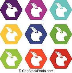 Bitten apple icon set color hexahedron