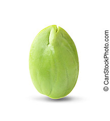 Bitter bean an isolated on white background