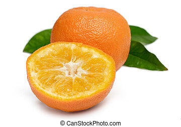 Bitter Orange  on white