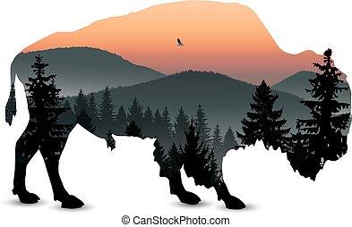 bizon, silhouette