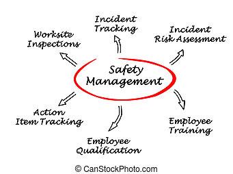 biztonság, vezetőség