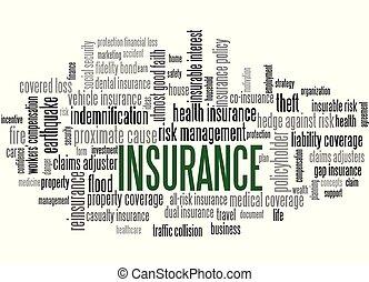 biztosítás, szó, címke, felhő, szavak, kapcsolódó, to rizikó, vezetőség
