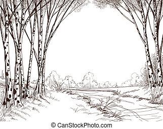 björk träd, skog, grafisk, bakgrund
