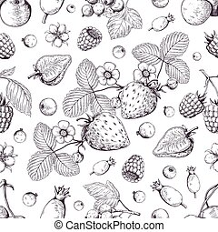 björnbär, skiss, körsbär, efterrätt, drawing., årgång, pattern., hand, jordgubbe, vektor, meny, bakgrund, tranbär, oavgjord, bär, skog