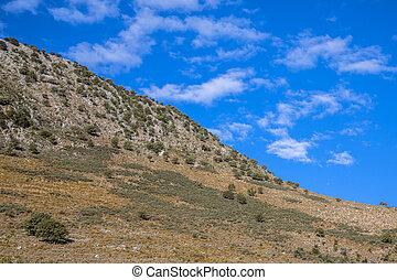 bjerg, abstrakt, peloponnese, landskab