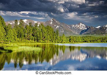 bjerg sø