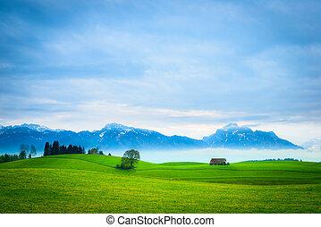 bjerge, eng, træ, hut, grønnes høj, landskab