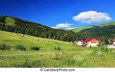 Bjerge, Landskab