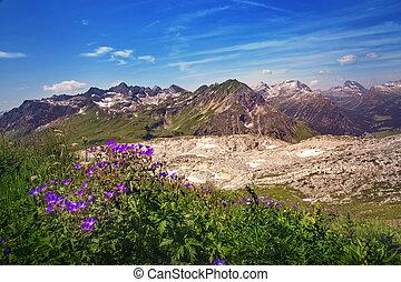 bjerge, landskab, ind, vorarlberg