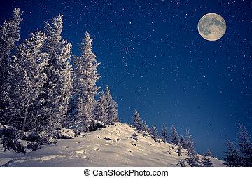 bjerge, vinter, himmel, måne, ull, nat