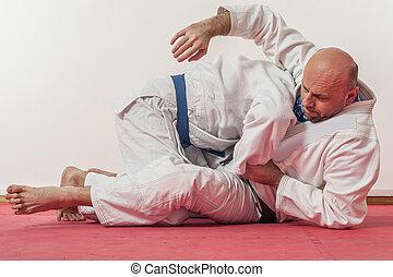 bjj, brasileiro, jiu-jitsu, treinamento, demonstração, em,...