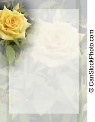 bkground, rose, jaune