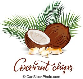 blätter, handfläche, abbildung, kokosnuss