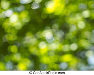 Blätter, hintergrund, Verwischt