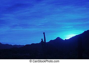 blå, ørken, solopgang