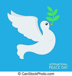 blå, abckground, fred, sky, filial, affisch, oliv, internationell, vita dök, dag