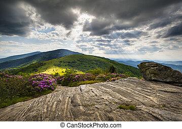 blå alpin, ås, mountains, appalachian, nc, tennessee, skugga, brun häst med vita stänk, västra, norr, längs, gräns, landskap, carolina