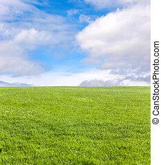 blå, fält, grönt himmel