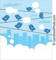 blå, fåglar, nätverk, bakgrund, social