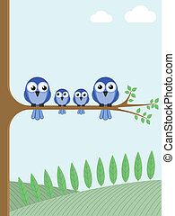blå, fåglar
