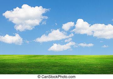 blå, felt, himmel, baggrund