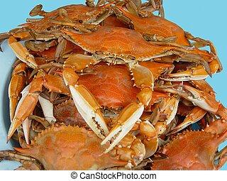 blå, festmåltid, krabba