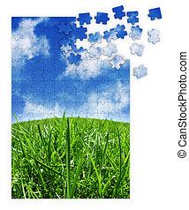 blå grønne, græs, opgave