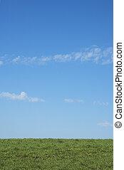 blå grønnes, græs, himmel, baggrund