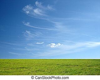 blå grønnes, græs, himmel