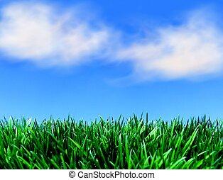 blå himmel, grønnes græs