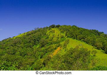 blå himmel, grønnes høj