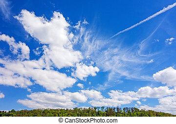 blå himmel, smukke, skyer, skov