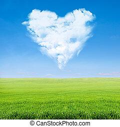 blå, hjerte, himmel, grumset, felt, grønne