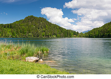 blå, idylliske, eng, alatsee, himmel, sø vand, grønne
