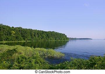 blå insjö, landskap, in, a, grön, texas, skog, synhåll,...